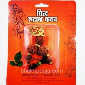 kashi unique rudraksha kawach