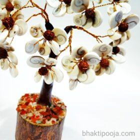 gomti chakra tree