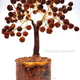 rudraksha beads tree