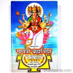 gayatri brahmavidya sri vidya
